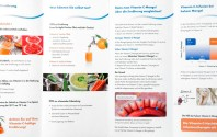 Die Vitamin C Hochdosis-Infusionstherapie