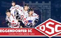 Teamarzt des DSC in der Sparte Eishockey auch in der neuen Saison 2019/2020
